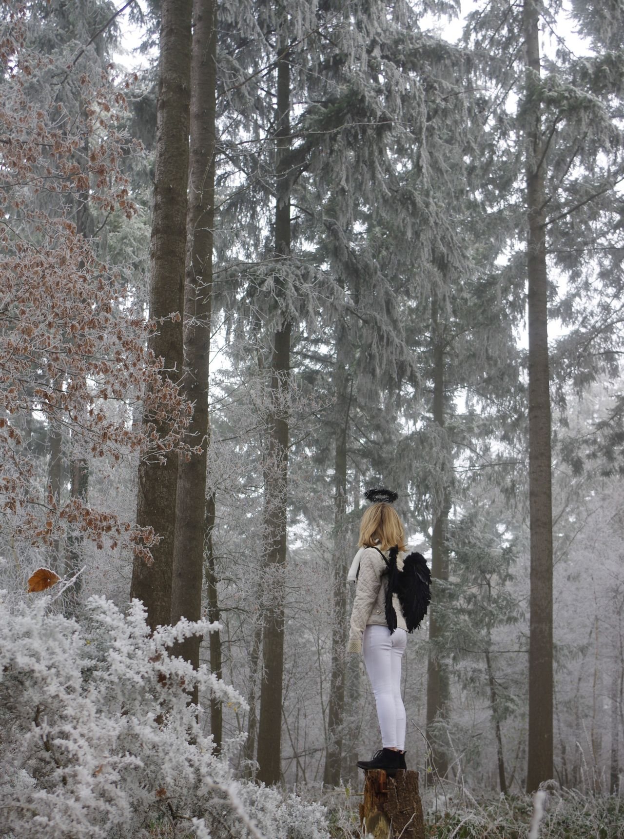 5/6 Winter Cold Temperature One Person Nature Forest Beauty In Nature Young Adult Snowing Angel Fairytale  Outdoors Frozen Girl One Woman Only