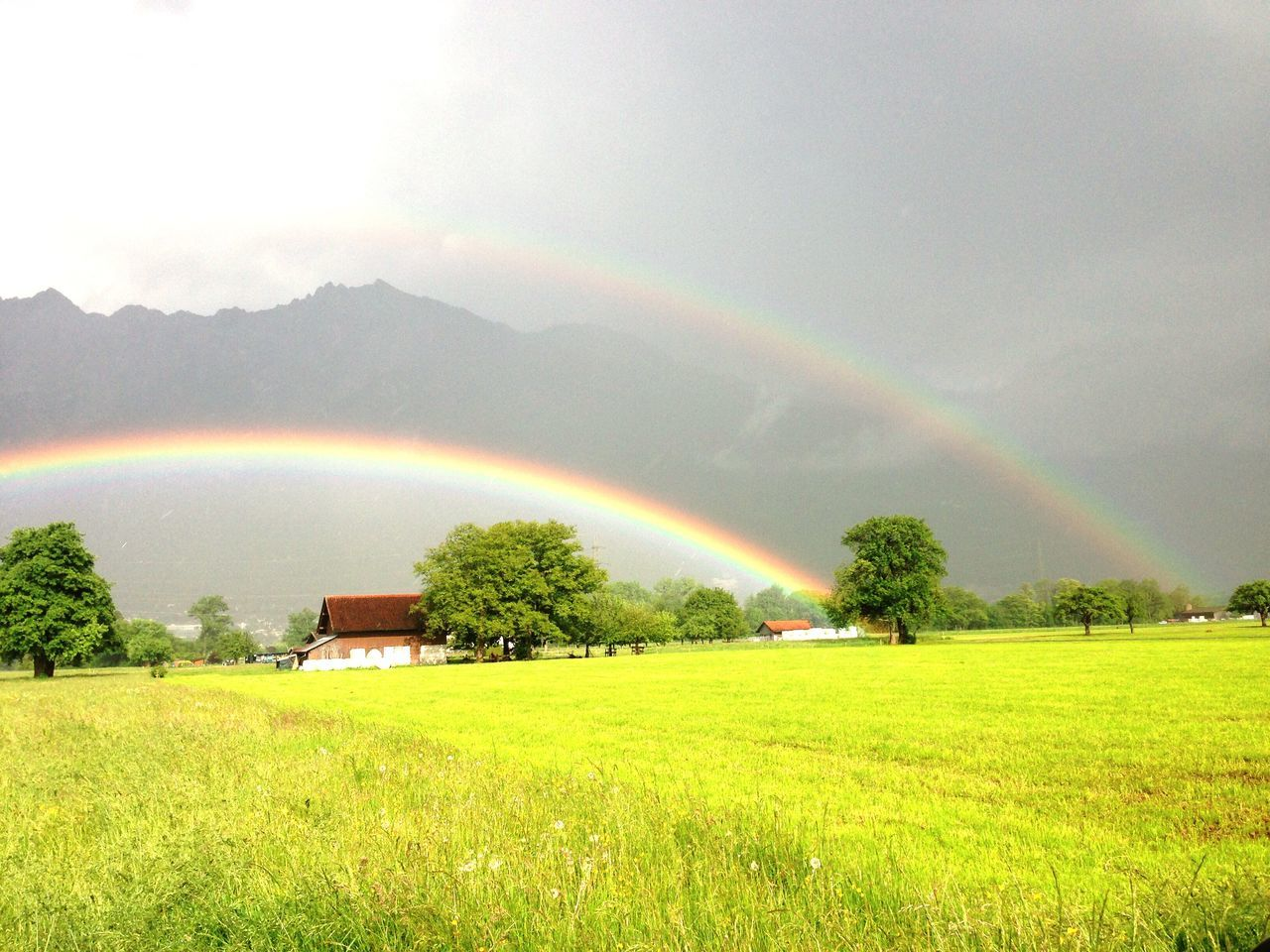 rainbow, double rainbow, idyllic, nature, scenics, field, beauty in nature, tranquil scene, tranquility, grass, no people, landscape, day, mountain, green color, agriculture, tree, growth, outdoors, rural scene, sky, spectrum, freshness