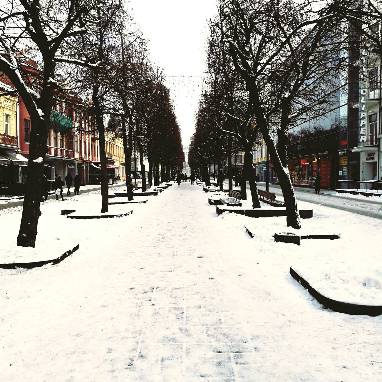 It`s my home town! My love! Hometown City Tree Snow Cold Temperature Winter Day Mylove Outdoors Nature People Sky