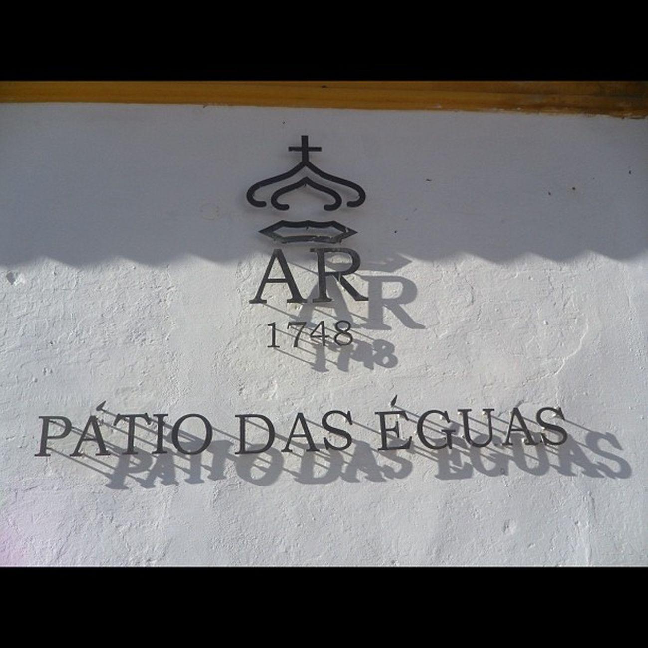 Pátio Éguas Igers Alentejo Igersportugal Alterreal Alterdochao Coudelariadealter