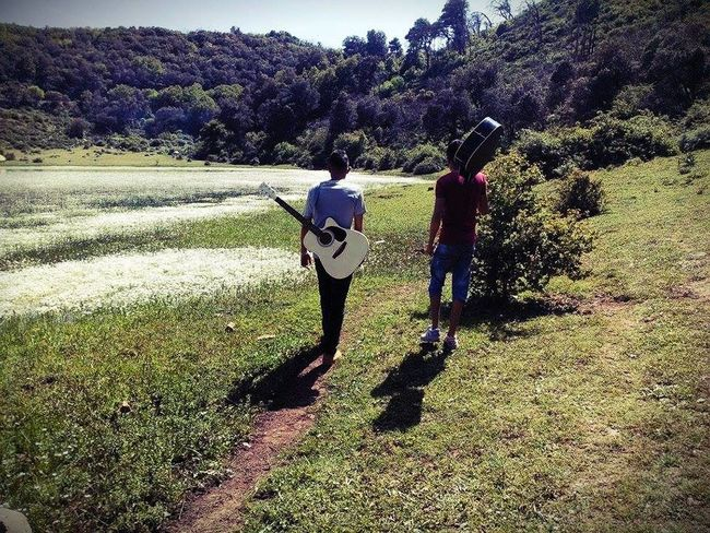 Beauty In Nature Guitar Guitarist Lifestyles Nature
