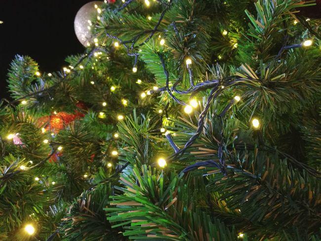 Backgrounds Focus On Foreground Lighting Equipment Christmas christmas tree Night Celebration Christmas Decoration Illuminated Tree