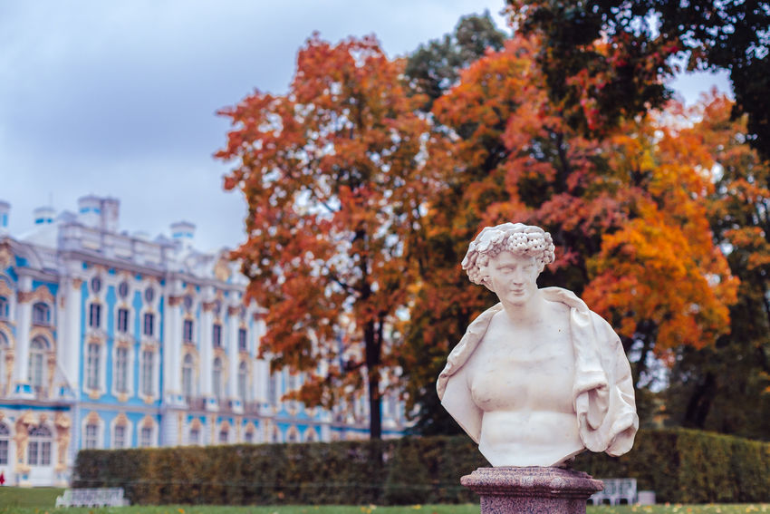 Autumn Catherine Park Day Fall Colors Focus On Foreground No People Outdoors Overcast Pushkin  Russia Saint-Petersburg Sculpture Travel Destinations Tree Tsarskoe Selo