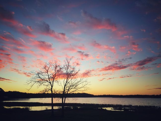 Tranquil Scene Water Sunset Tranquility Scenics Silhouette Lake Bare Tree Sky Non-urban Scene Beauty In Nature Nature Majestic Dusk Atmosphere Reflection Colors And Patterns EyeEm Best Shots Landscape Clouds And Sky Blue Pink Color