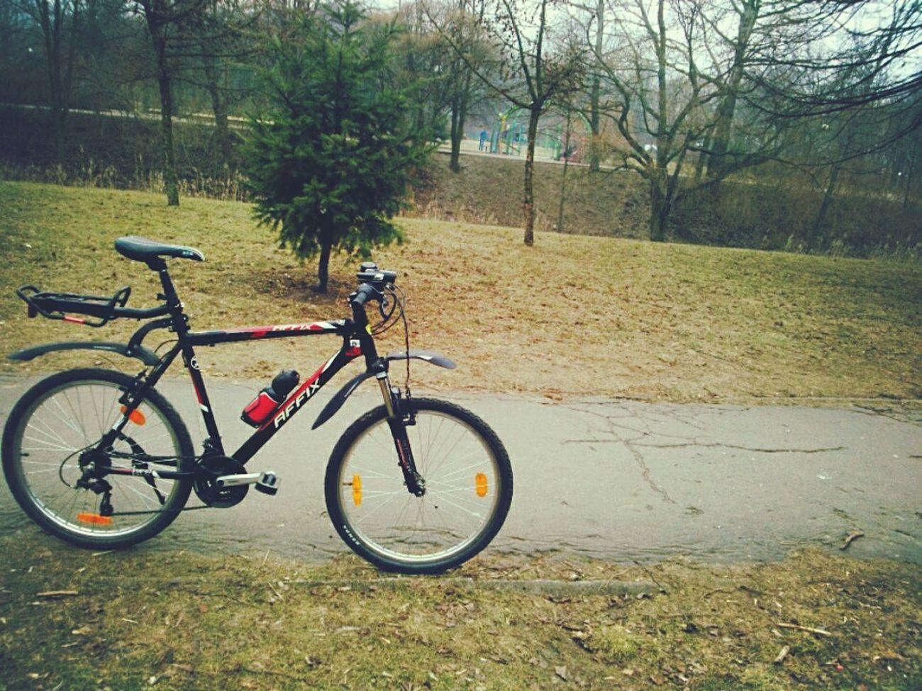 Bike Bike Ride Biking Biking By… Exercising Bike Life MTB Sport Fun Enjoying Nature