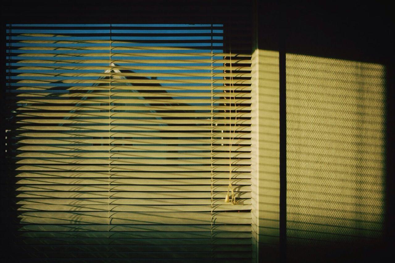 Light Shadow Home Window