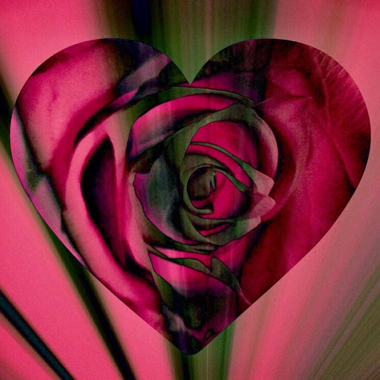 Happy Valentine's Day 💐 Valentine's Day  Heart Shape Playing With Effects Love ♥ All We Need Is Love Humanity At It's Finest Flower Head Beauty In Nature For My Friends That Connect