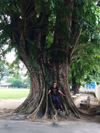 Perspectives On Nature 200yrs old tree. MGS Ipoh Tree Real People One Person Tree Trunk Full Length Growth Lifestyles Leisure Activity Casual Clothing Day Nature Outdoors Looking At Camera Standing Young Adult Young Women Beauty In Nature Rope Swing People