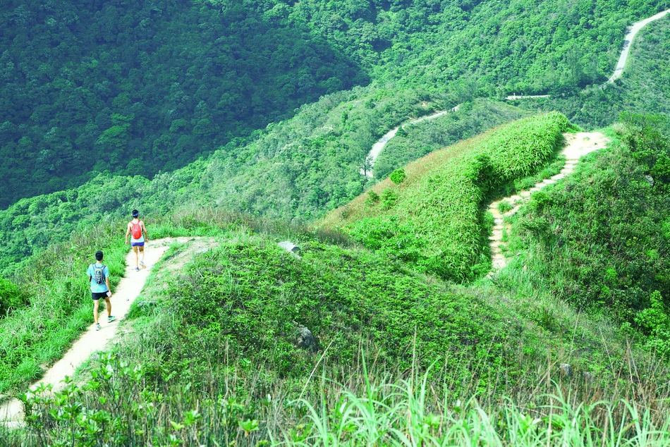 another face of Hong Kong, The Great Outdoors With Adobe Trecking Ridge Mounten Hong Kong Green Green Green!  Greenmountain Longridge Hikking Tadaa Community Nature The Great Outdoors - 2016 EyeEm Awards Landscape Adventure Club Color Palette