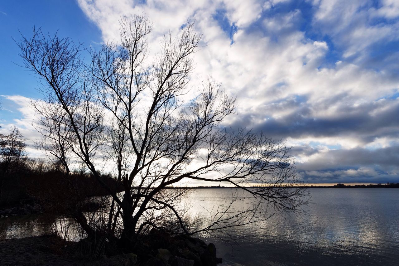 Different From My Point Of View Living In The Shadows Clouds And Sky Gotta Stay Focused  YOU BLUE ME AWAY...... Tree Silhouette Water Reflections Catching Light Black And Bright