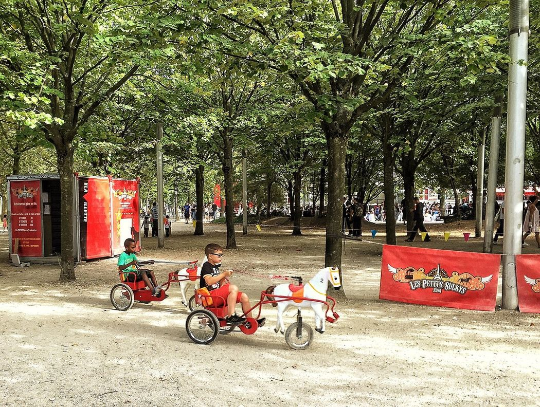 Merrygoround Enjoyment Kids Horses Tree Transportation Bicycle City Life Person Day Vacations Green Color Red France Paris Parcdelavillette Sun Fun Outdoors Multi Colored Leisure Activity Enjoying Life Capture The Moment