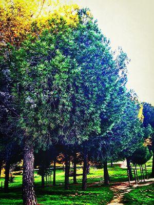 Photo by María