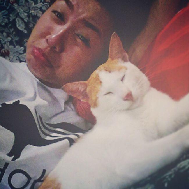 Coz' he took up all the space :( Feline Cat Meowstagram Instacat kawaii pets