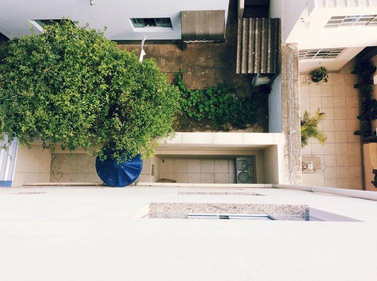 House Day Nublado Dia Sky Nubladon ESCURO Gotico Nature Natureza 🐦🌳 Urbano Alturas