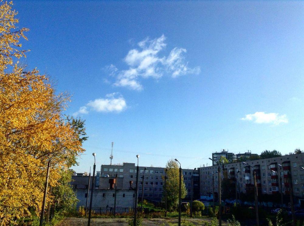 October Sweet October! Octoberphotoaday Oct October Love