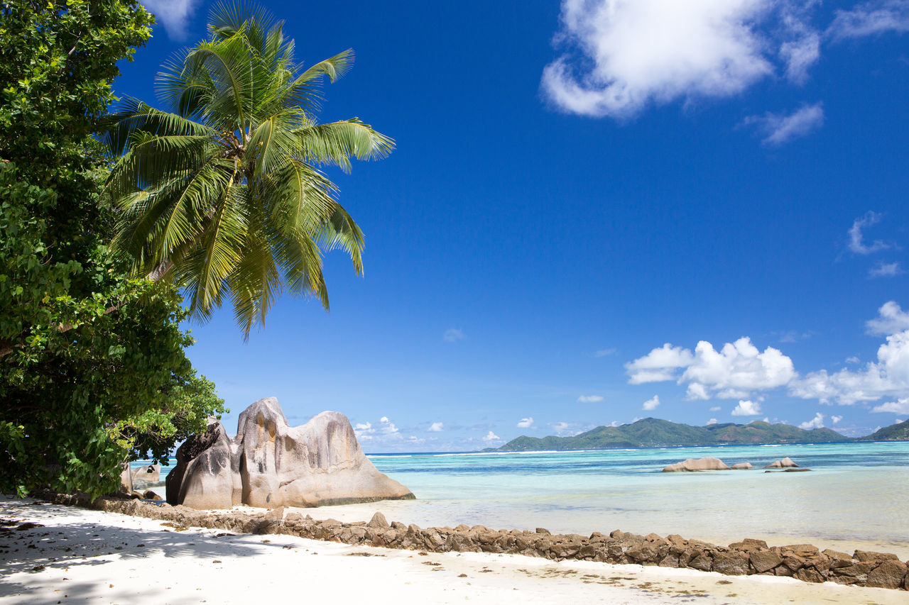La Digue Anse Lazio Anse Source D'argent Beach Beauty In Nature Blue Cloud - Sky Day Horizon Over Water Landscape Mahé Nature No People Outdoors Praslin Seychelles Sand Sand Dune Scenics Sea Sky Tourism Tree Vacations Water