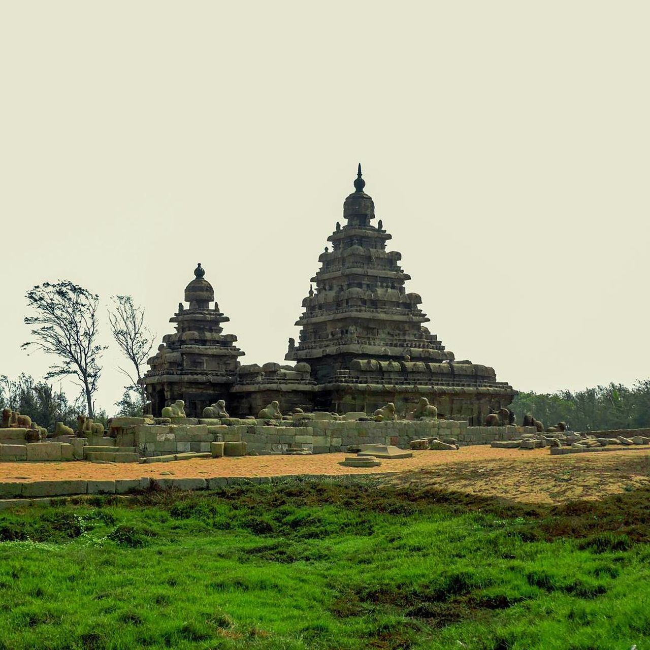 Sea Shore Temple Shivan Temple Anicent Temple India Nikon Nikon Photography Chennai