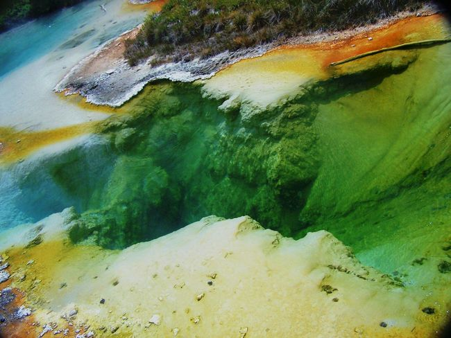 Great natural color pallet. 🎨 Geysers Geyser Yellowstone National Park Seismic Geological Landscape_Collection Landscape_photography Landscape Beautiful Nature Extremenature