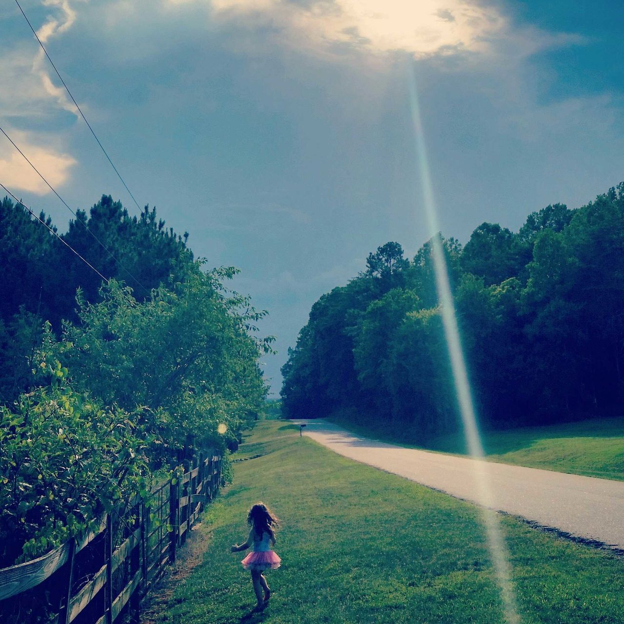 rainbow, tree, nature, outdoors, growth, real people, sky, motion, day, double rainbow, one person, beauty in nature, spraying, grass, landscape, scenics, water, people