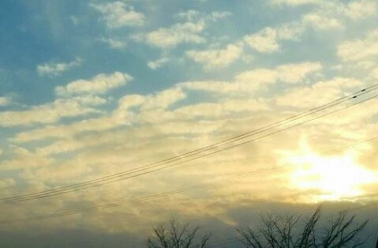 Cloud - Sky Sky Beauty In Nature Tree Low Angle View Relaxing Sunset Nature EyeEm Nature Lover Taking Photos Love It Day Hello World Beauty In Nature Clear Sky EyeEm Best Shots - Nature 空 Winter_collection 3XSPUnity Sky_collection EyeEm Best Shots Eye4photography