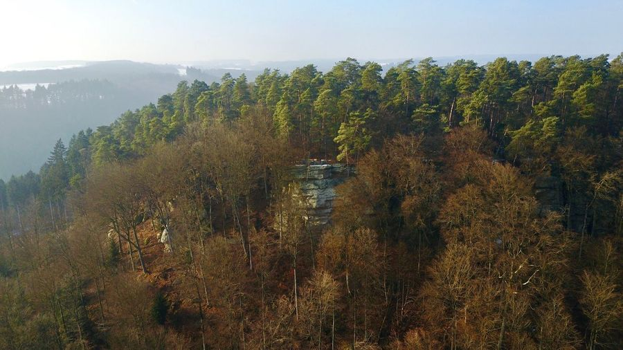 Beaufort - Viewpoint @ Kippiglay Tree Nature Scenics Beauty In Nature Water Sky Growth Tranquility Outdoors Idyllic Forest No People Tranquil Scene Landscape Day Mountain Cliff Beaufort Landscape_Collection DJI Mavic Pro Luxembourg Beaufort