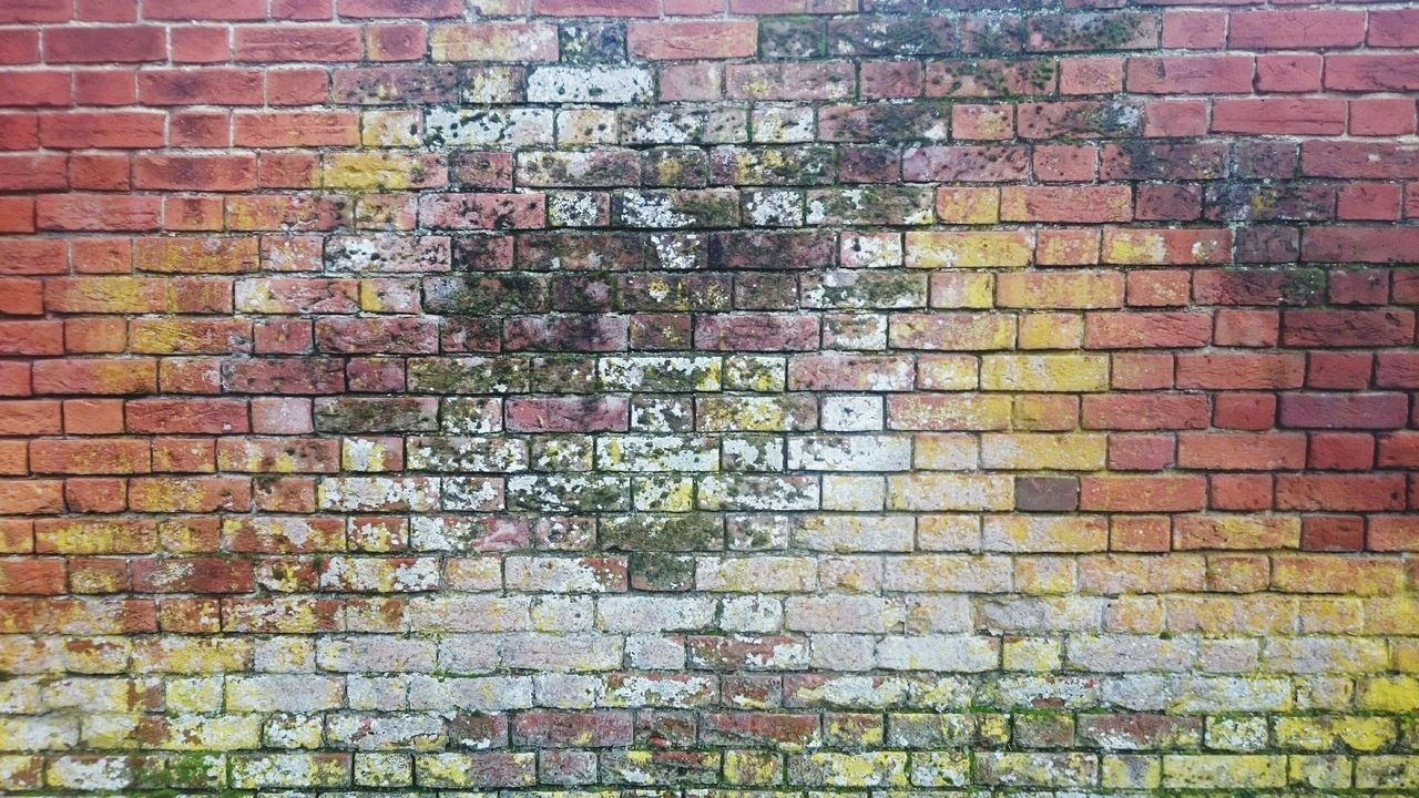 Full Frame Brick Wall Backgrounds Built Structure Pattern No People Building Exterior Architecture Outdoors Textured  Architecture Brick Wall Brickporn Brickwork  Brick Rainbow All The Pretty Colors All The Colours Old Buildings Old Bricks Old Brick Wall Old Brick Wall Colors Old Brick Walls Background Texture Background