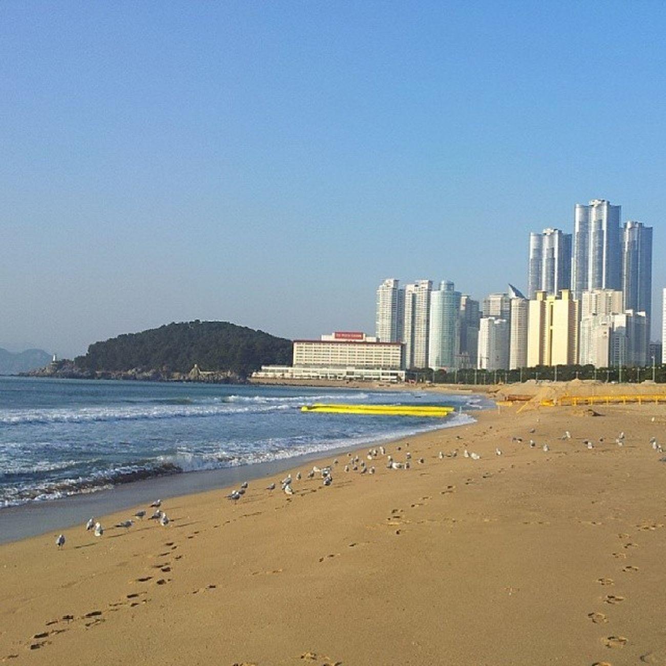 beach view in busan Busan Haeundae Beach Beautiful nofilter
