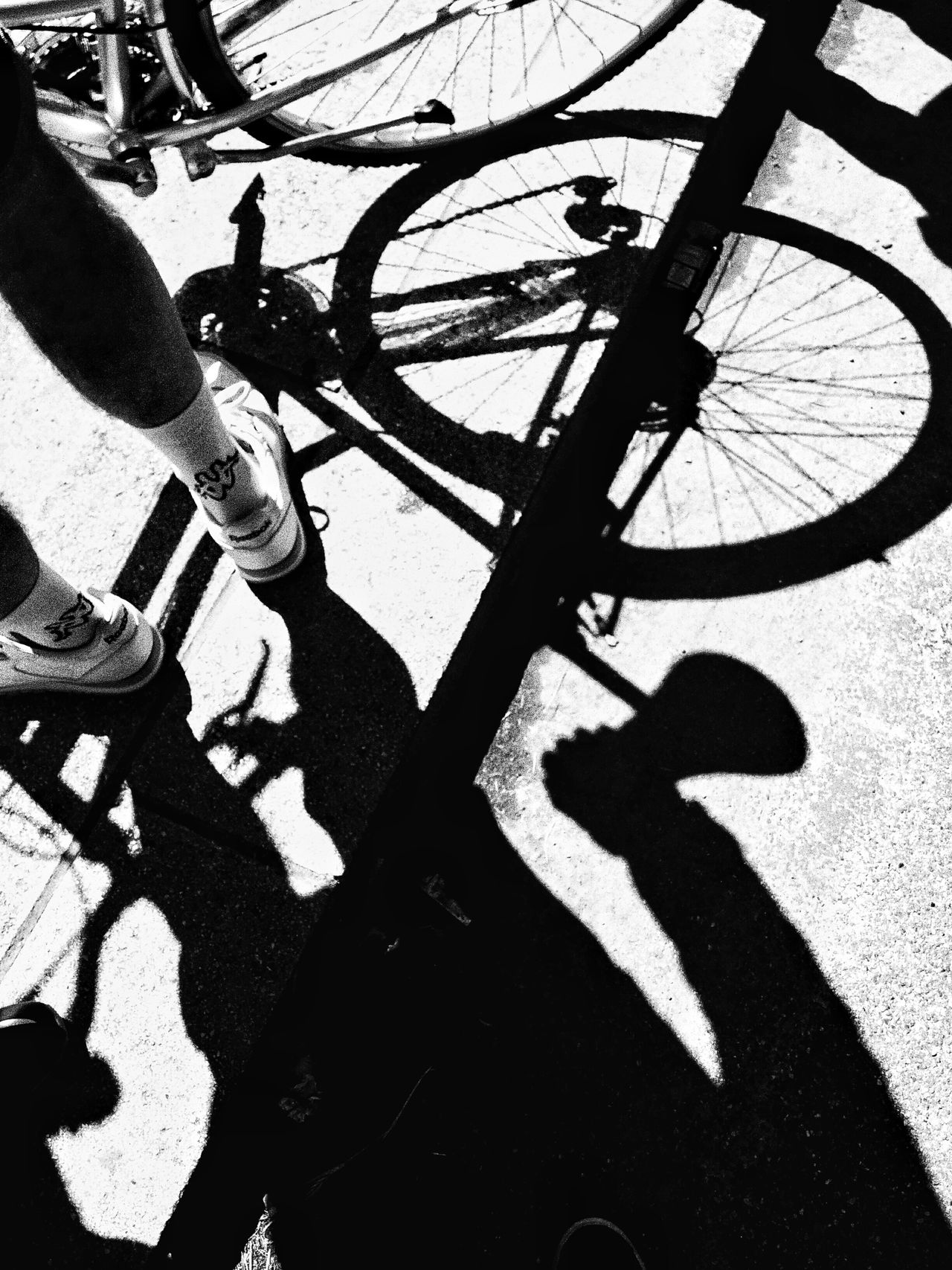 Giroditalia2016 Bike Blackandwhite Shadow