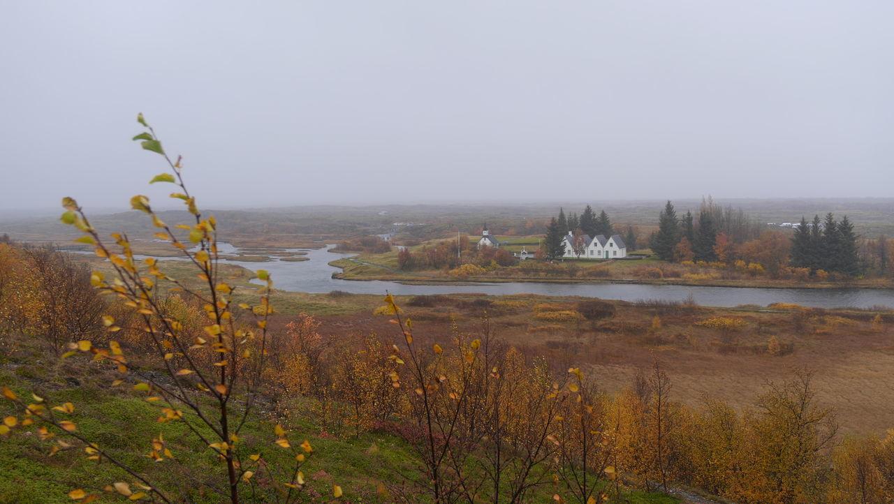 Day Nature No People Outdoors Rocks Sky Thingvellir Thingvellir National Park Tree þingvellir Þingvellir National Park