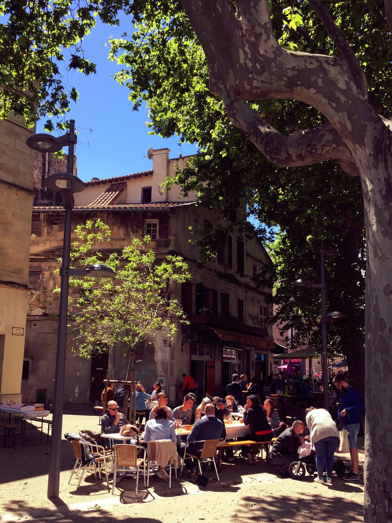 Arles Tree Building Exterior Architecture Table Outdoors Built Structure Day Cafe Large Group Of People People Sitting Sidewalk Cafe Togetherness City Friendship EyeEmNewHere France Provence