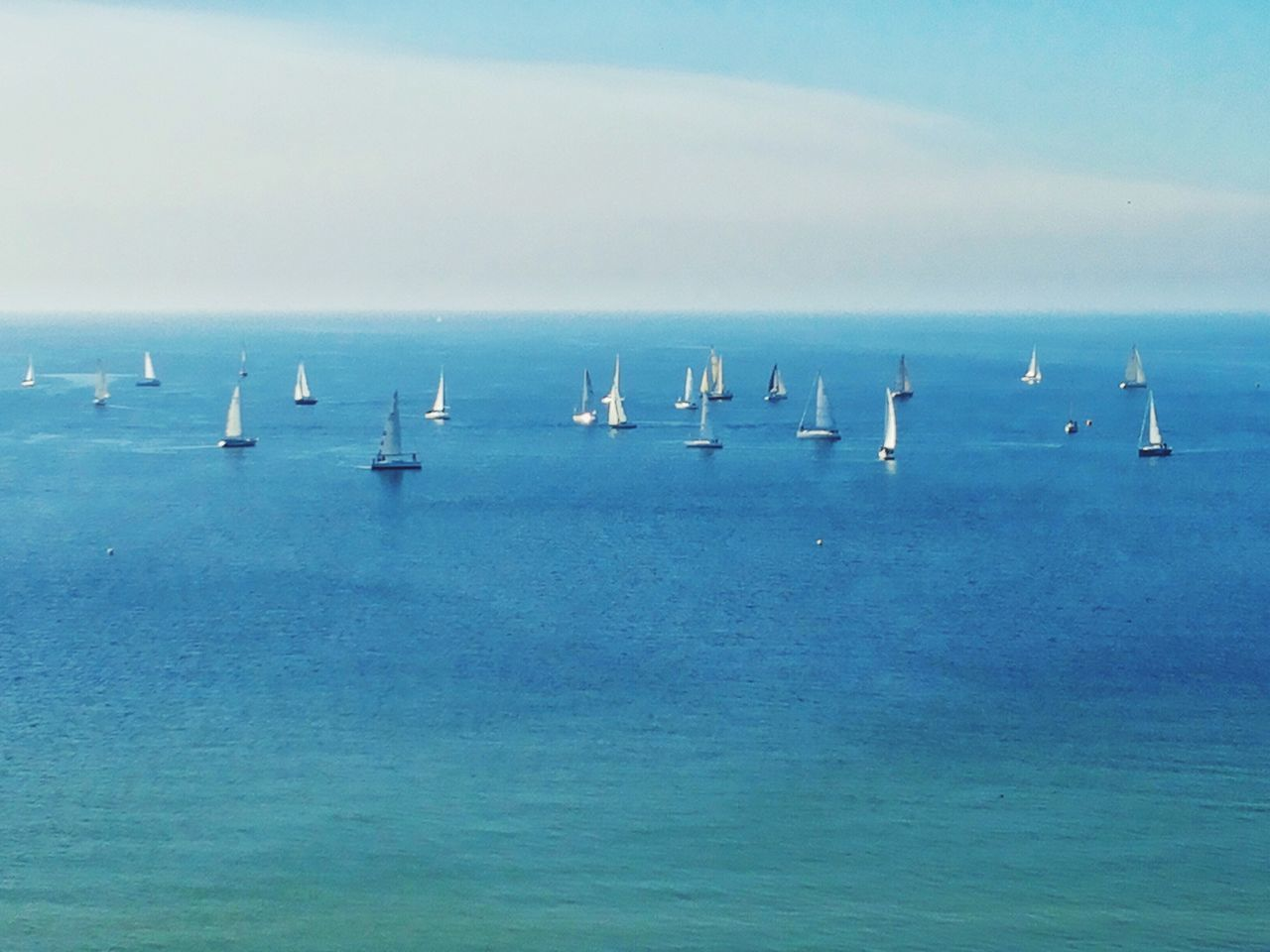 Sea Scenics Beauty In Nature Water Nature Horizon Over Water Sky Outdoors Regatta Day Animals In The Wild Tranquility No People Sailing Sailboat Sailing Ship Sailboats Ocean Blue Sea