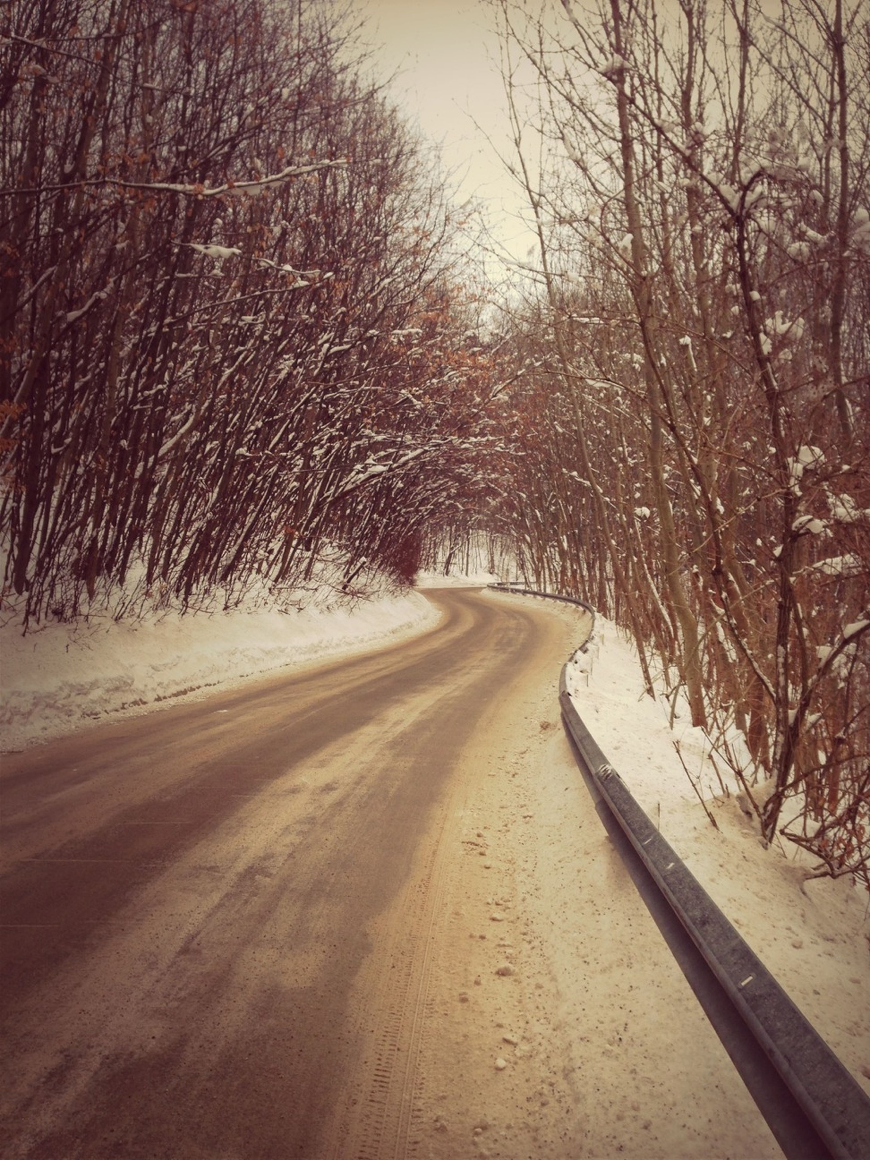 the way forward, tree, snow, bare tree, winter, cold temperature, road, diminishing perspective, tranquility, tranquil scene, vanishing point, nature, transportation, season, landscape, branch, weather, beauty in nature, empty road, scenics