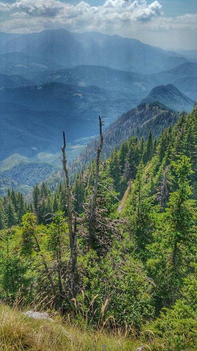 Mountain View Landscape Landscape_photography Carpathians Romania