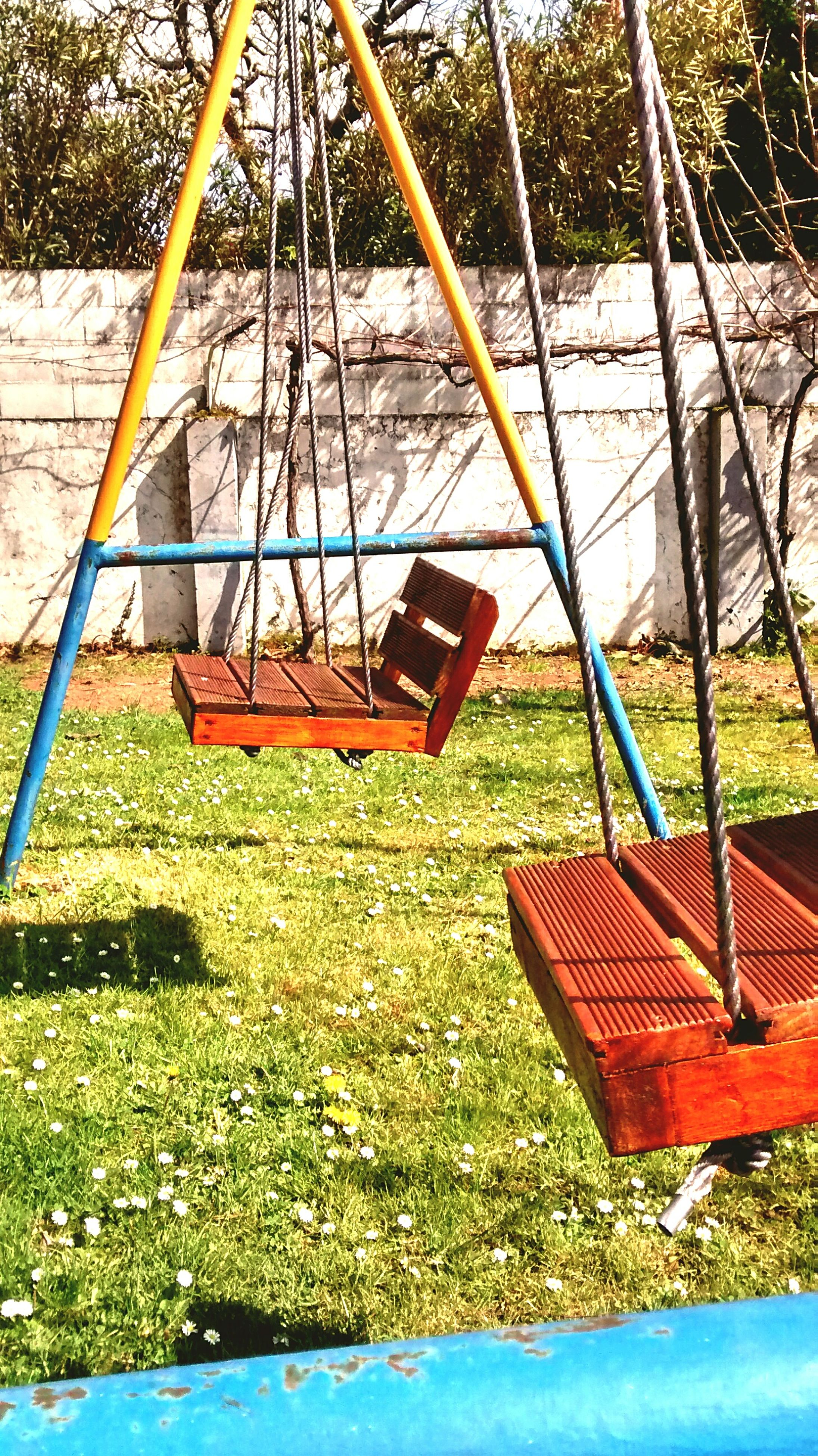 grass, absence, swing, playground, empty, chair, bench, grassy, field, tree, sunlight, tranquility, nature, day, park - man made space, seat, wood - material, outdoors, park bench, childhood