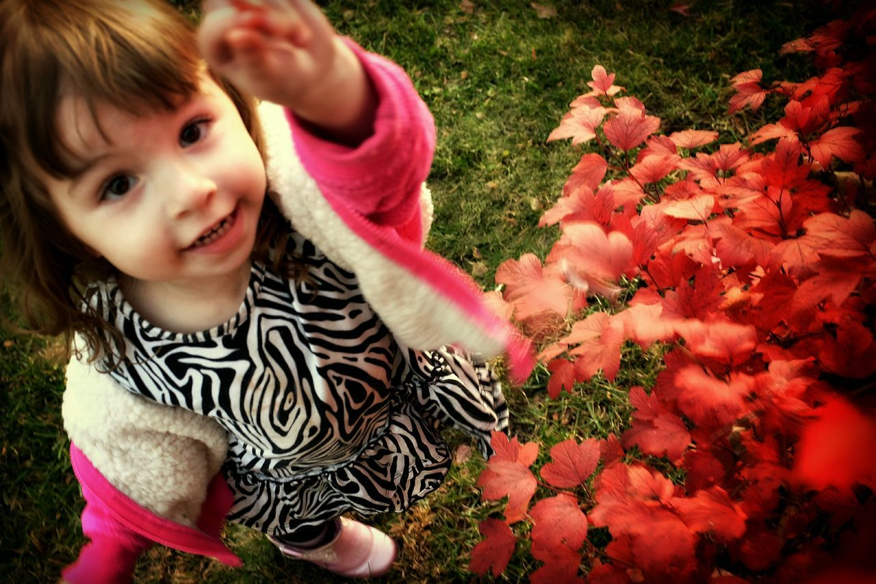 High Angle Portrait Of Cute Girl Standing By Plant In Park During Autumn