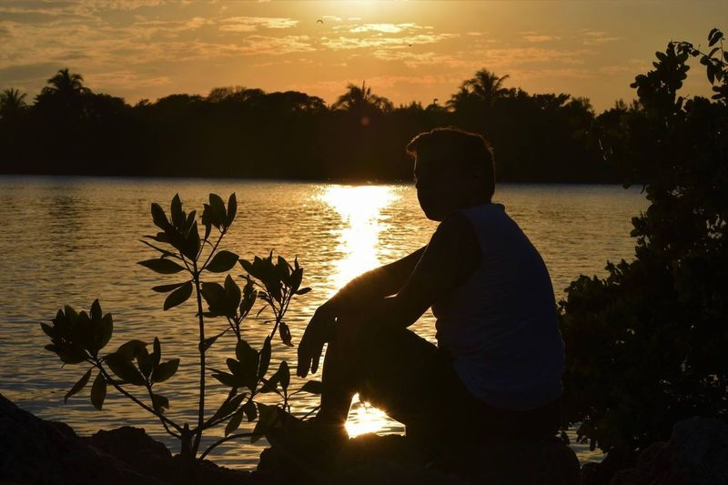 Sunset Nature Water Rear View Beauty In Nature Tree One Person Silhouette Lake Scenics Outdoors Flower Beautiful Sunset Beautiful Sunset♥♥Good Evening EyeEm Sky Beauty In Nature Amazing Nature Love The Sunset😊☀️🌙 Silhouette