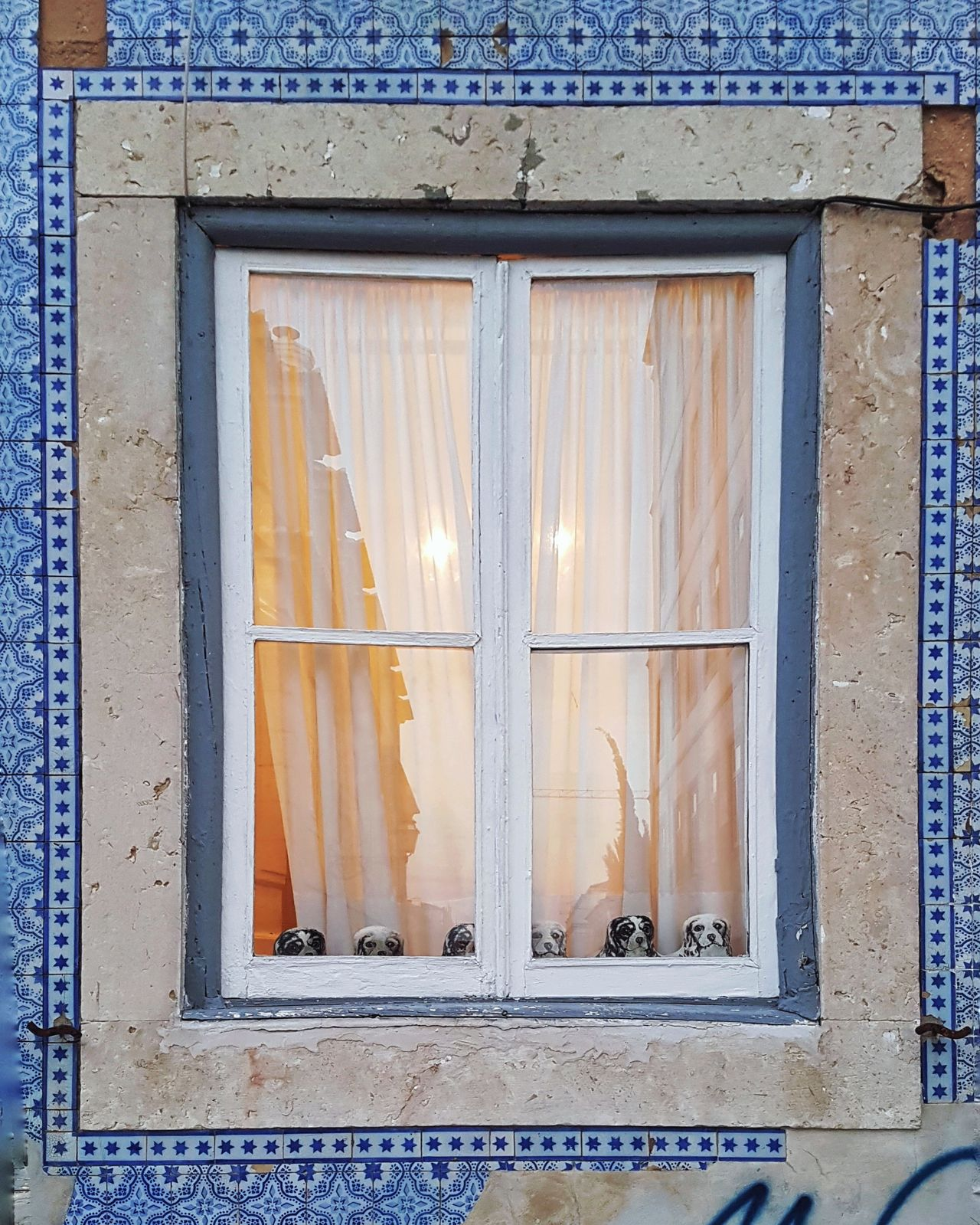 Window Architecture Rustic Close-up Minimalist Minimalism Windows_aroundtheworld Pattern Art Is Everywhere EyeEmNewHere WeekOnEyeEm Street Photography Streetphotography Blue Color Azulejosportugueses Out Of The Box Waiting Cozy Place Cozy Atmosphere Lisboa, Portugal