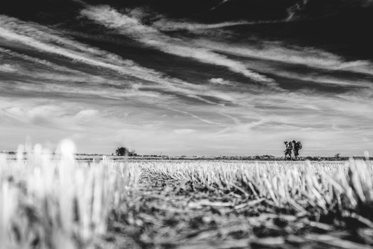 Blackandwhite CaminodeSantiago Cloud - Sky Jakobsweg Pilgrimage Scenics St James Way The Photojournalist - 2017 EyeEm Awards The Way Forward Tranquility SPAIN Spaın Pilgrim Outdoors Last Autumn (september/october 2016) I traveled alone to France and Spain to work on my Photography Documentary Project called Faces and Places of the Camino de Santiago. I walked the French Way, from Saint Jean Pied de Port(France) to Santiago de Compostela (Spain), more than 800 km with my backpack and my Camera. The project was to photograph the Camino and the Pilgrims with a Pilgtim's Eyes. My goal with this project was not to photograph monuments or lsndscspes, all I tried to photograph was the mood and the spirit of the Camino. The project in a near future is to turn into a Photography book that willl be called The Ride - A Photographer's Journey thru the Camino de Santiago! Hope you all enjoy the Ride thru my images...