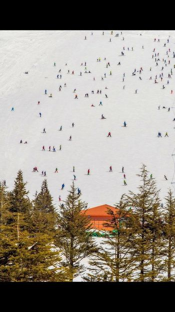 Nature Beauty In Nature Cold Temperature Winter Lebanese_nature Beauty In Nature Mountain Lebanon Snow ❄ 🗻☁☁ ⛷