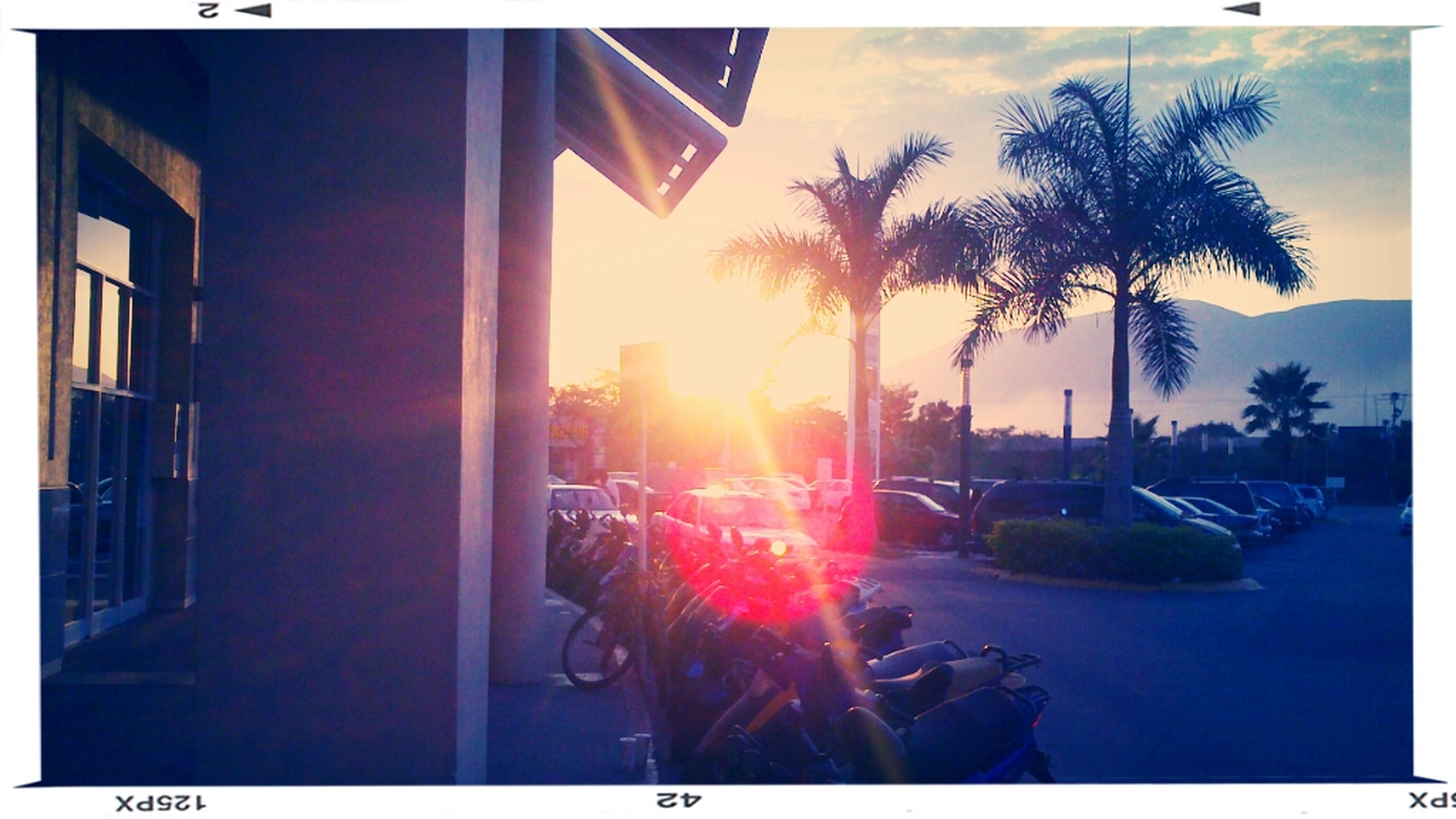 transfer print, auto post production filter, sun, building exterior, sunset, architecture, built structure, sunlight, tree, sky, sunbeam, car, city, lens flare, transportation, mode of transport, reflection, land vehicle, outdoors, house