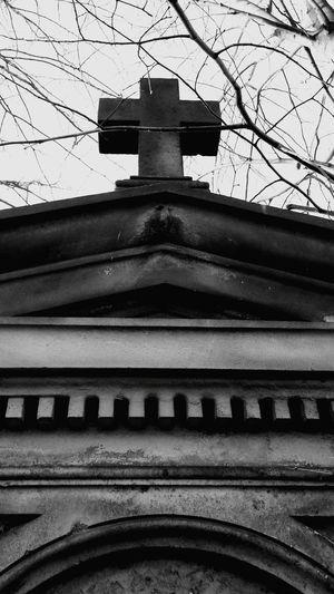 Old Cementary Cmentarz