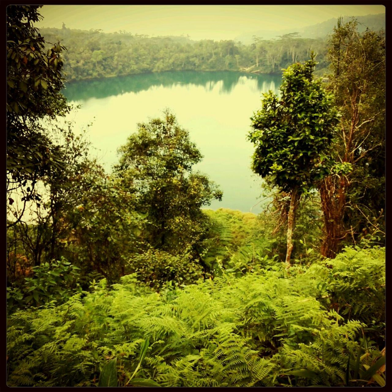 Manggarai_flores_indonesia