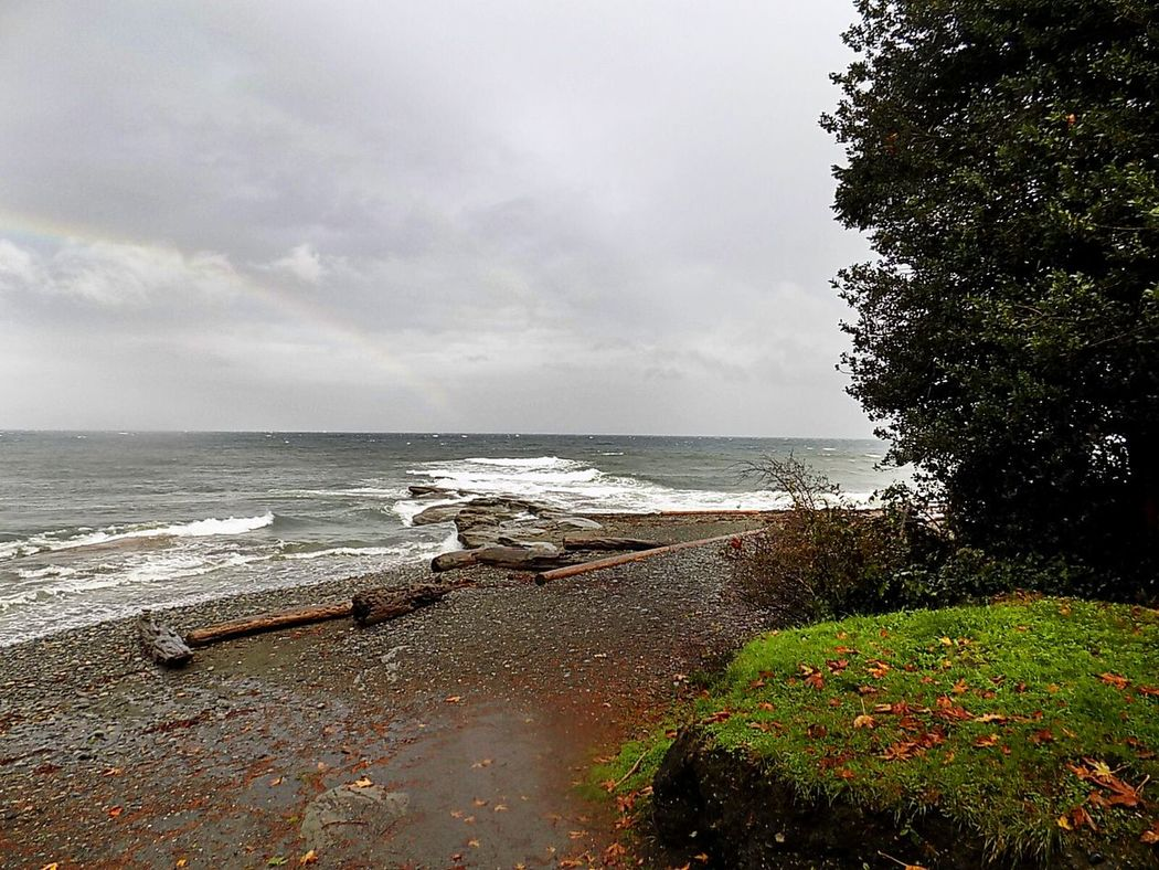 Sea Water Horizon Over Water Beach Tranquil Scene Tree Tranquility Scenics Vacations Sky Coastline Calm Shore Idyllic The Way Forward Beauty In Nature Tourism Nature Travel Destinations Wave Beach Scenes Bcstorm Stormy Weather No People Weather Photography