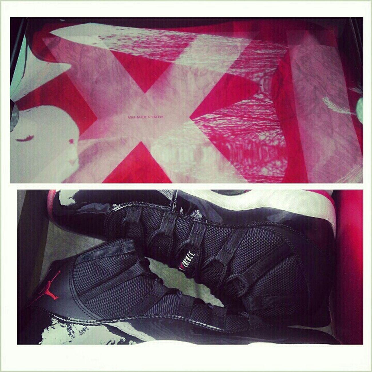 Sneaker Fiend