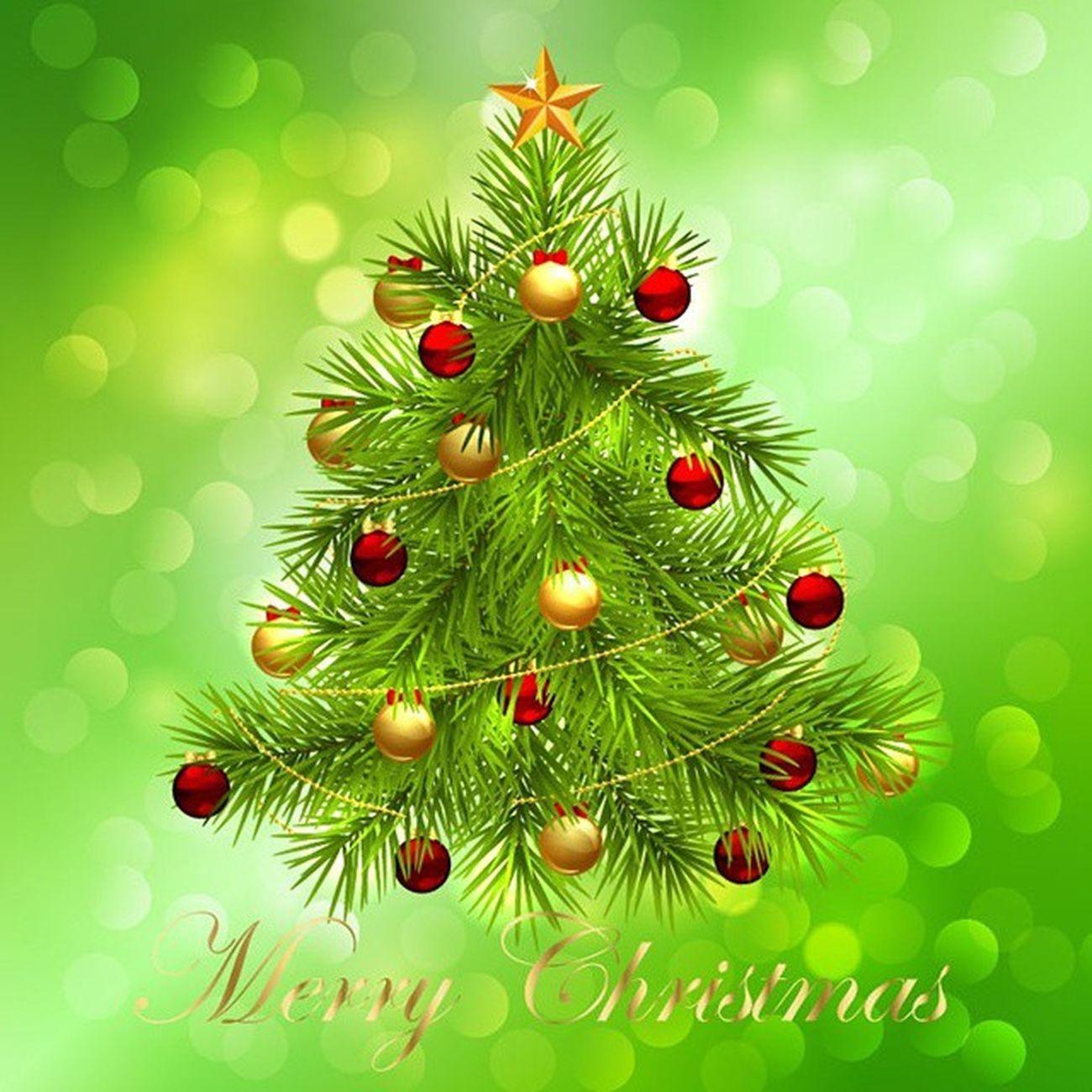 सभी को क्रिसमस दिवस पर हार्दिक शुभकामनाएं। MerryChristmas Christmas HappyMerryChristmas Happychristmas .