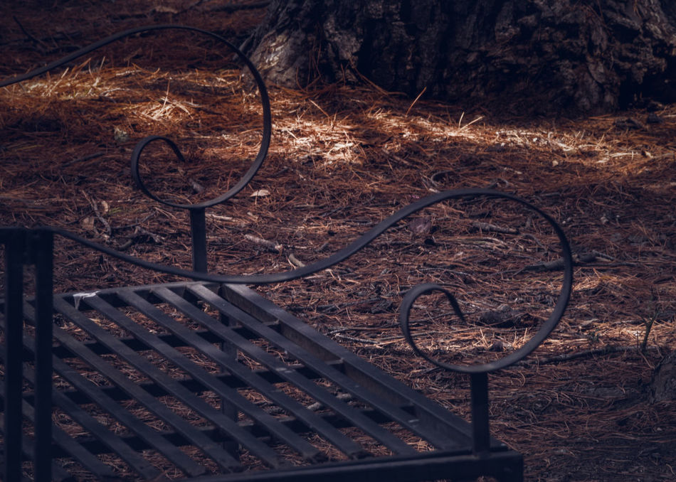 take a seat Bench Black Chair Day Metal Seat No People Outdoors Park Park Seat Seat
