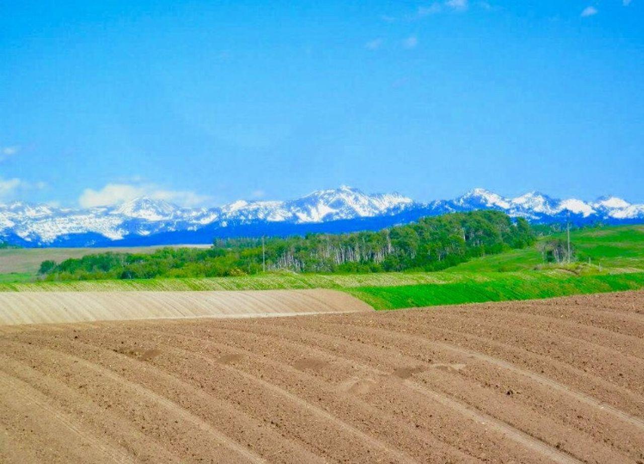 Idaho countryside Idaho Field Farm Farmland Trees Trees And Sky Mountains Mountain Mountain View Snow Snowymountain