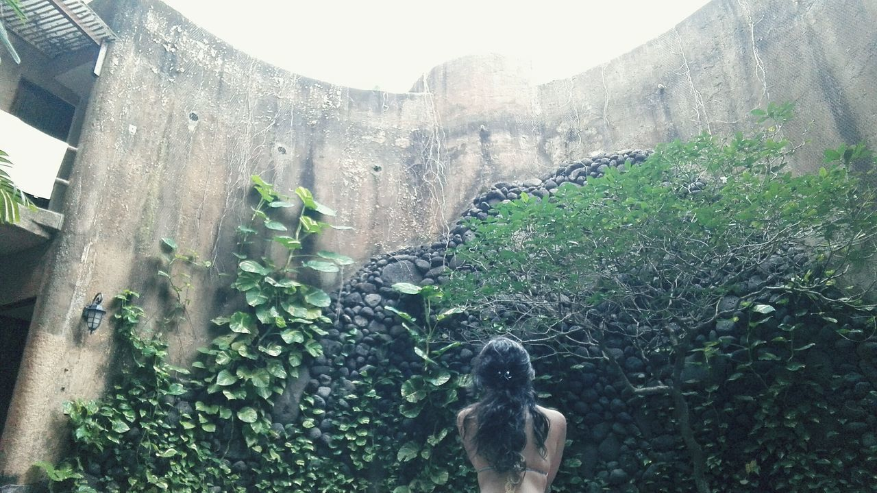 Beauty In Nature Nature Relax❤️ Green Wall