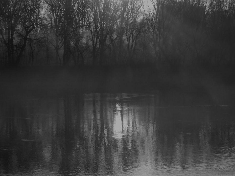 Foggy Morning Misty Morning Refractedlight Rising Sparks Rising Sun