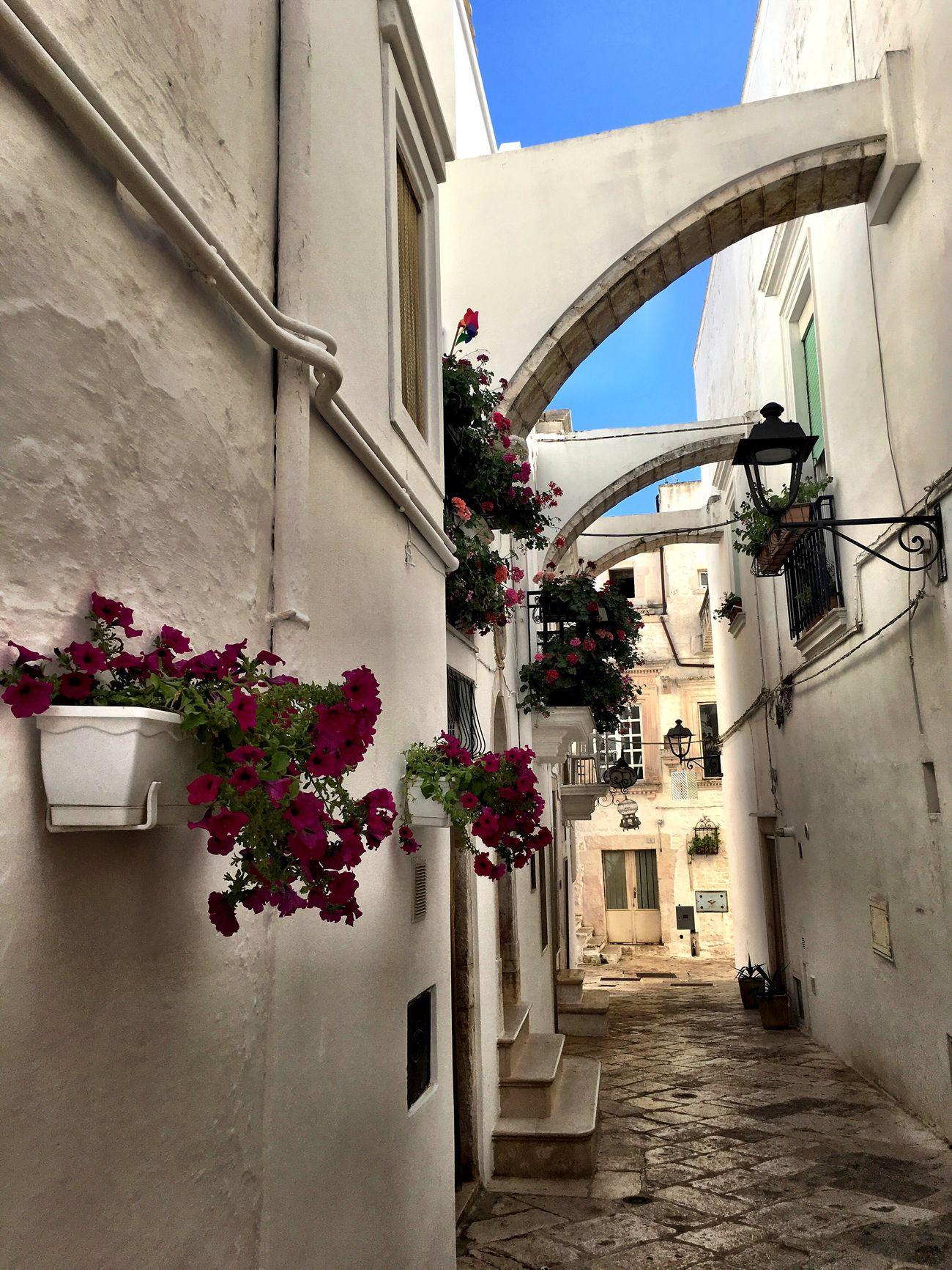 Weareinpuglia Locorotondo Puglia